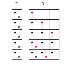 Principio de máxima multiplicidad explicación